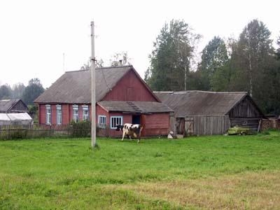 Деревня Бычиха