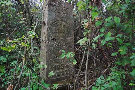Дисна. Старое еврейское кладбище.
