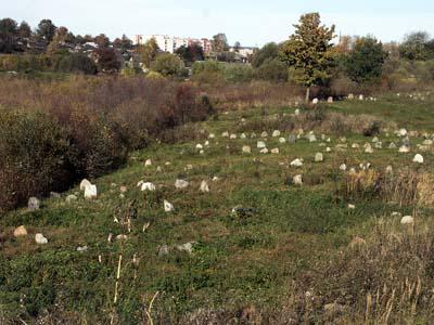 Городок. Старое еврейское кладбище.