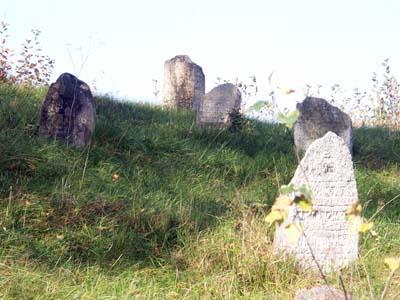 Gorodok. Old Jewish cemetery.