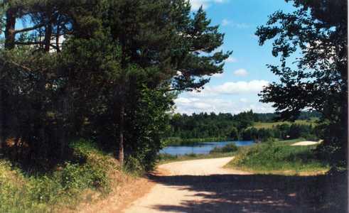 Когда-то эту дорогу называли Старомосковской..
