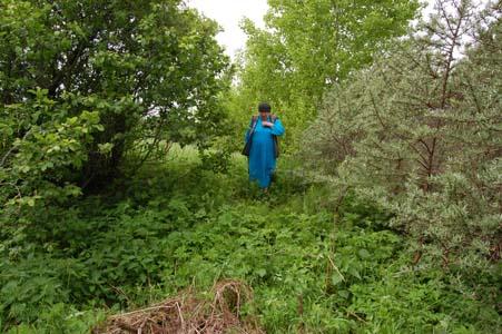 Нина Ивановна Трусова на месте захоронения Стэфы Шехтер и ее детей.