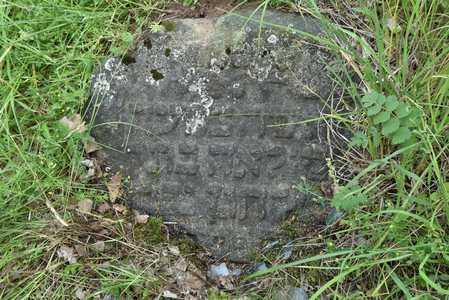 Шарковщина. Еврейское кладбище.