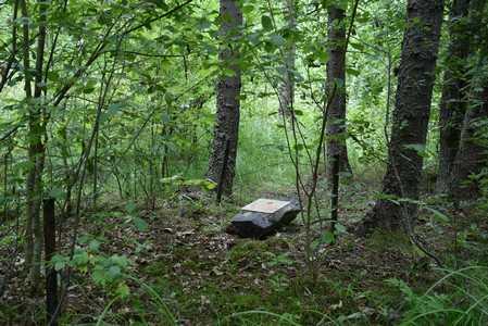 Камень памяти по жертвам Холокоста.