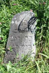 Еврейское кладбище в Ушачах.
