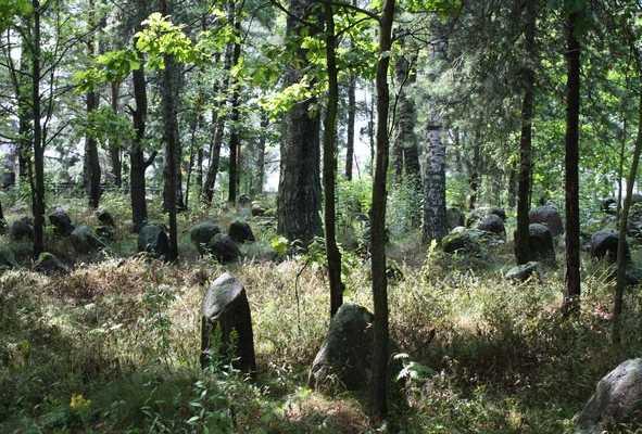 Верхнедвинск. Старое еврейское кладбище.