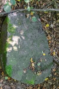 Мацейвы на еврейском кладбище в Поболово