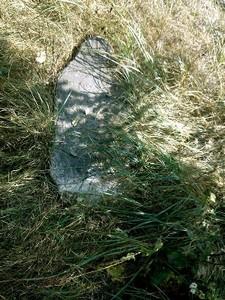 Щедрин. Старое еврейское кладбище
