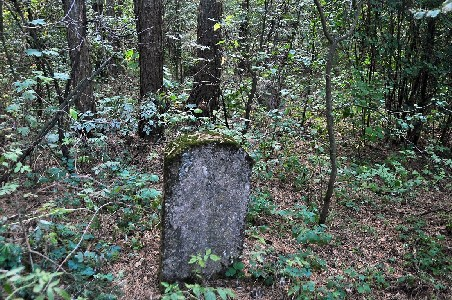 Еврейское кладбище в Журавичах