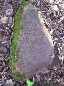 Еврейское кладбище в Богушевичах.