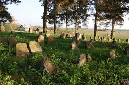 Долгиново. Еврейское кладбище.