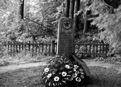 Памятник, установленный в 1966 г.