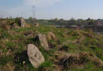 Красное. Еврейское кладбище.