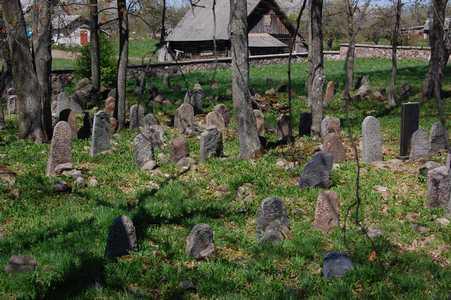 На старинном еврейском кладбище в Нарочи.