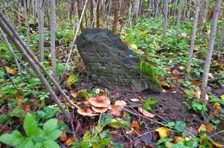 The Jewish cemetery in Obchuga shtetl.