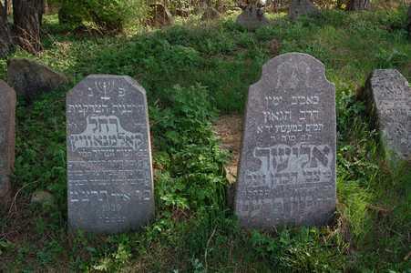 Rakov. At the Jewish cemetery.