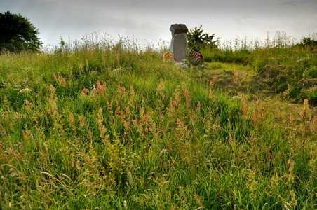Еврейское кладбище на выезде из Шацка.