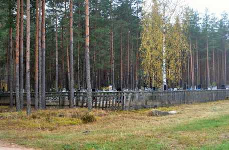 Старые Дороги. Новое кладбище.