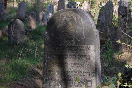 Свирь. Еврейское кладбище.