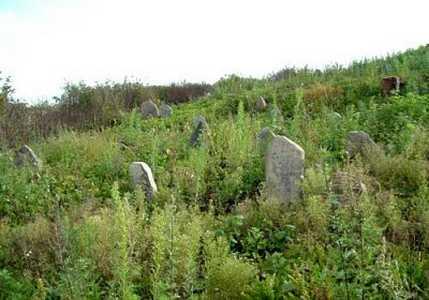 Вишнево. Еврейское кладбище.