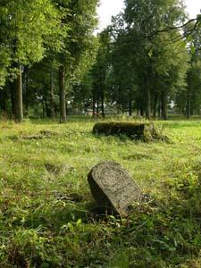 Старое еврейское кладбище Черикова.
