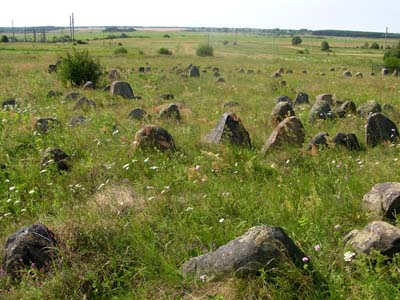 The Jewish cemetery in Dribin.