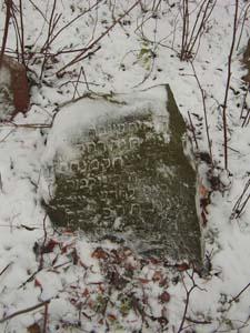 Jewish cemetery in Moliatichi.