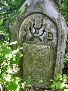 Еврейское кладбище в Славгороде.