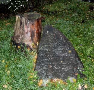 На еврейском кладбище Кричева.