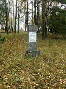 Reburial site of the Jews from Zaverezhie at the Jewish cemetery between the villages of Zaverezhie and Vorotynshina.